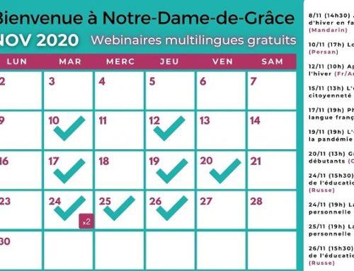 Event calendar November 2020