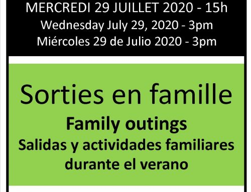 Webinar: Family outings (in Spanish)